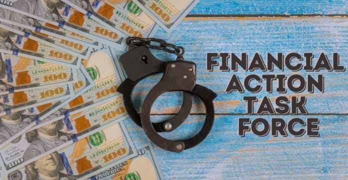 Financial Action Task Force in Hindi
